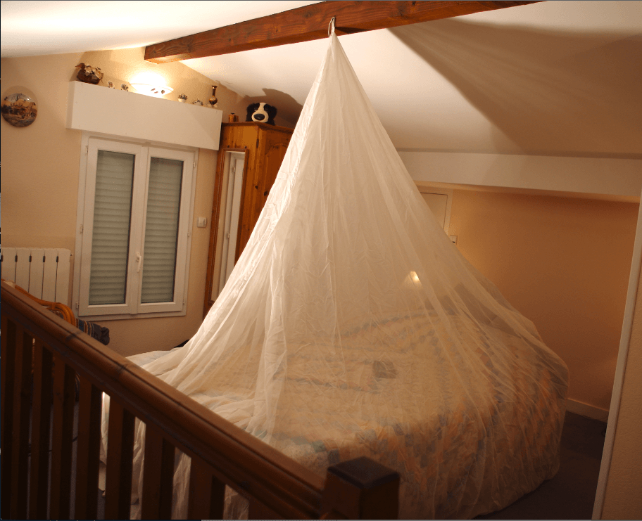 Faraday bed canopy