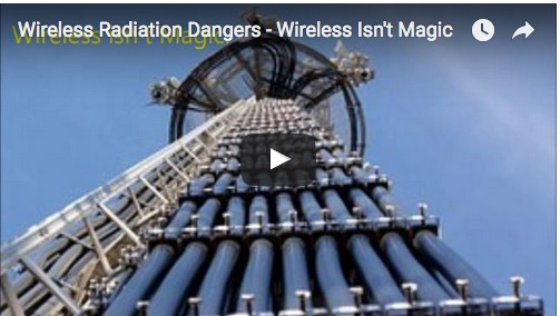 wireless radiation dangers