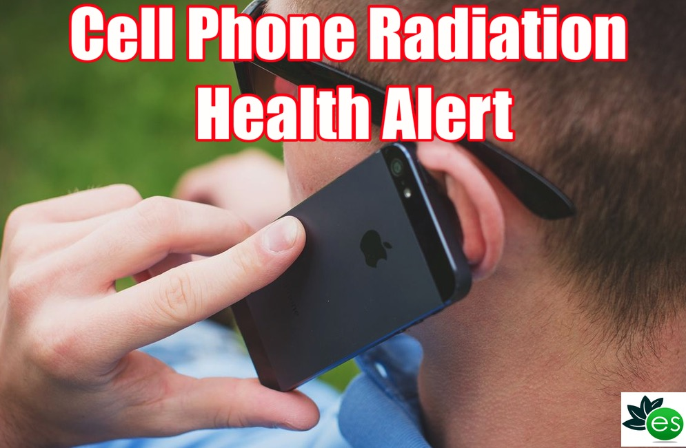 cell phone carcinogenic