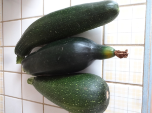 Some of my zucchini production