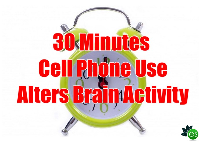 30 minutes cell phone radiation