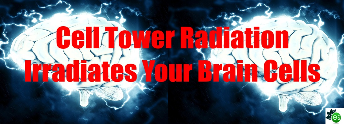 Can Cell Tower Radiation Cause Cancer? - ElectricSense