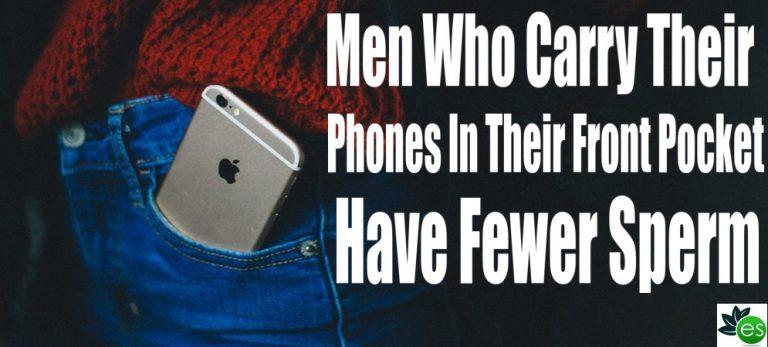 sperm Cell phone radiation