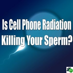 cell phone radiation damages sperm