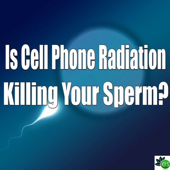 Radiation sperm donation