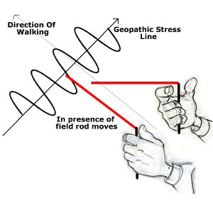 Drawings of hand holding L rods on GPS line - L rod moving in field EMFs