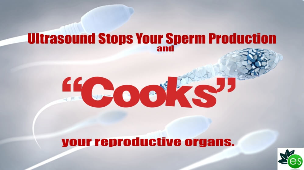 Ultrasound damages sperm production
