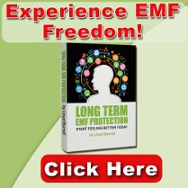EMF Protection Book