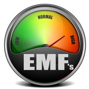 Meter with EMF levels