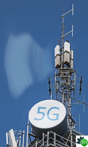 emf scientific research 5G