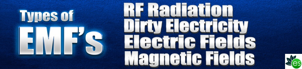 4 EMFs: Radio Frequencies,Electric fields, Magnetic fields, Dirty electricity