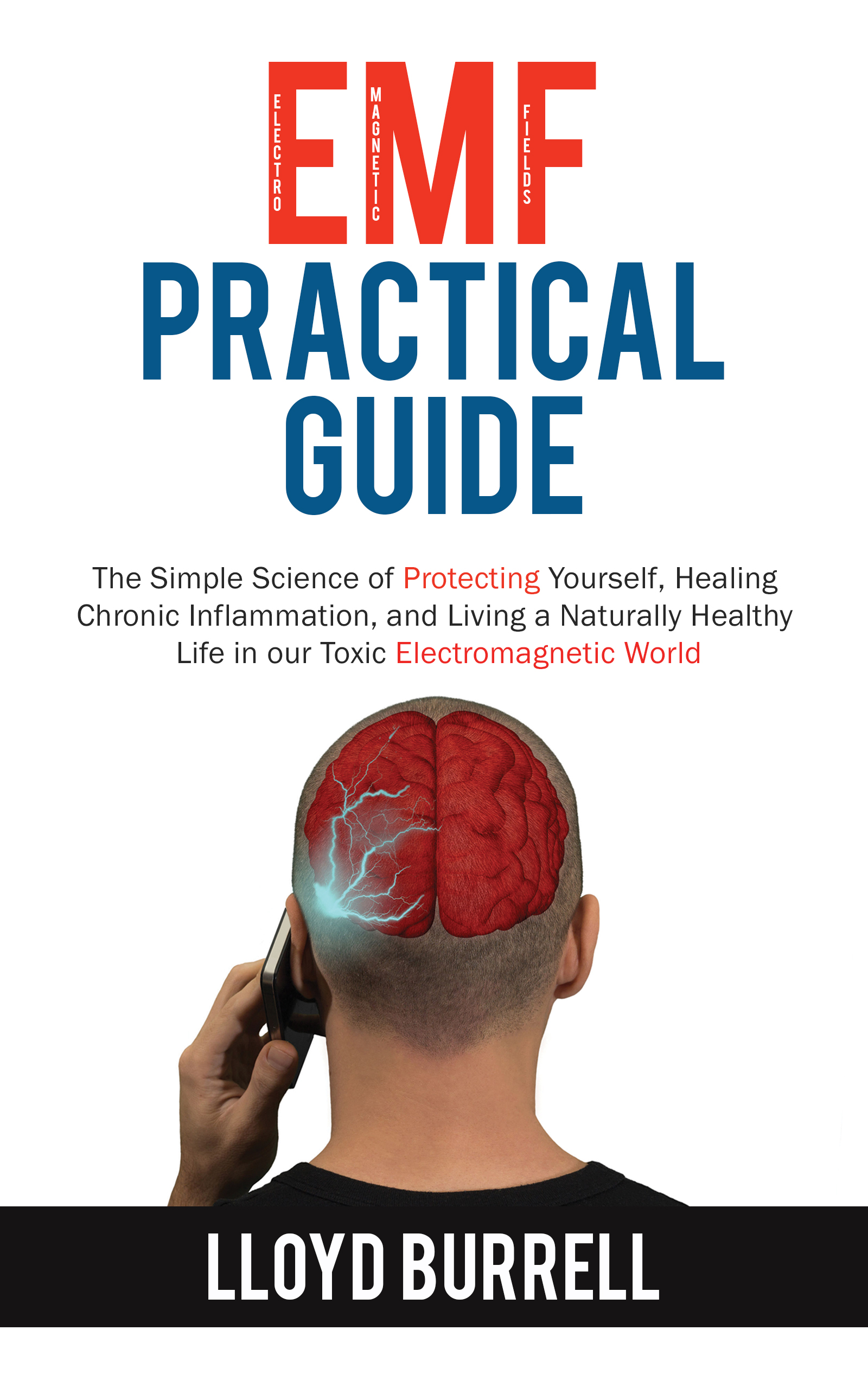 The EMF Practical Guide