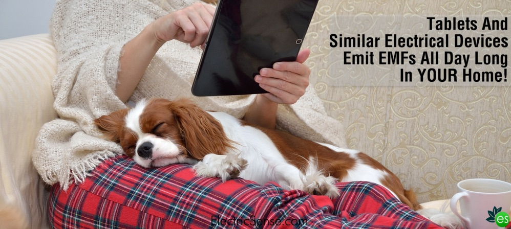 Woman Using tablet next to her dog